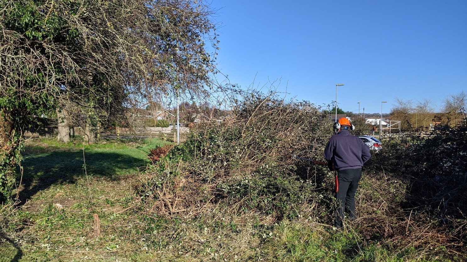 Village community area cleared by volunteers