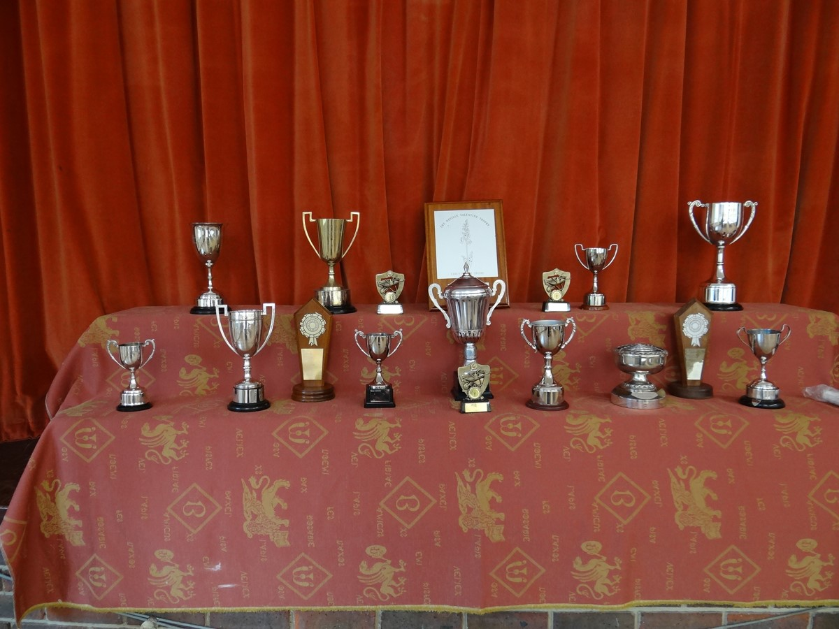 Annual Show - Cups
