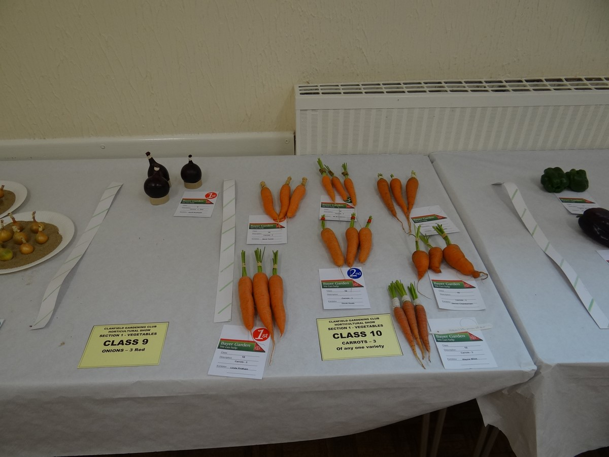 Annual Show - Vegetables