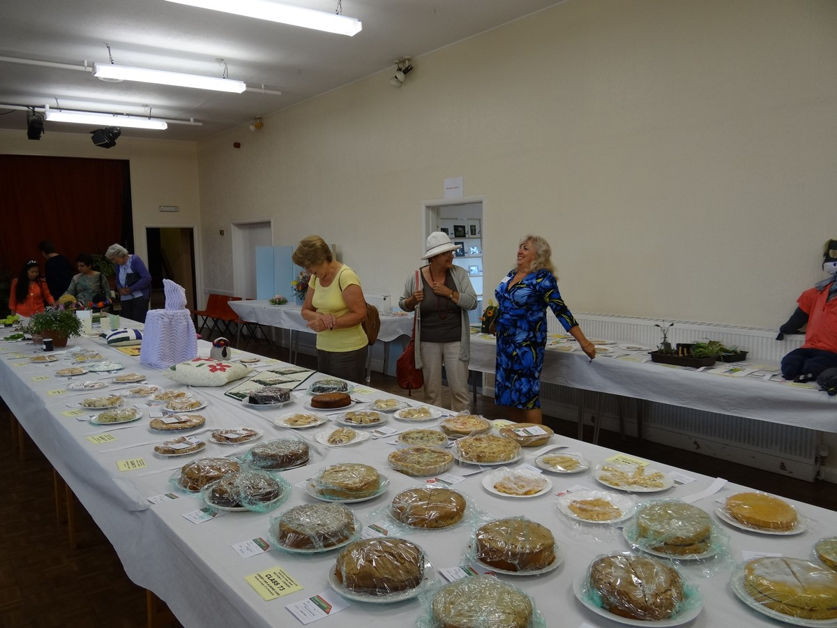 Annual Show - Cakes