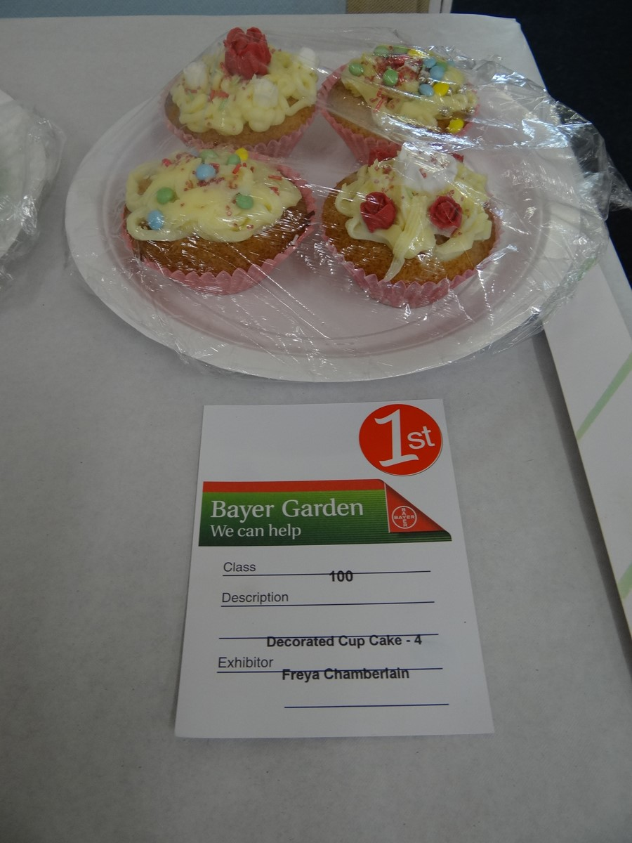 Annual Show - Children's Cakes