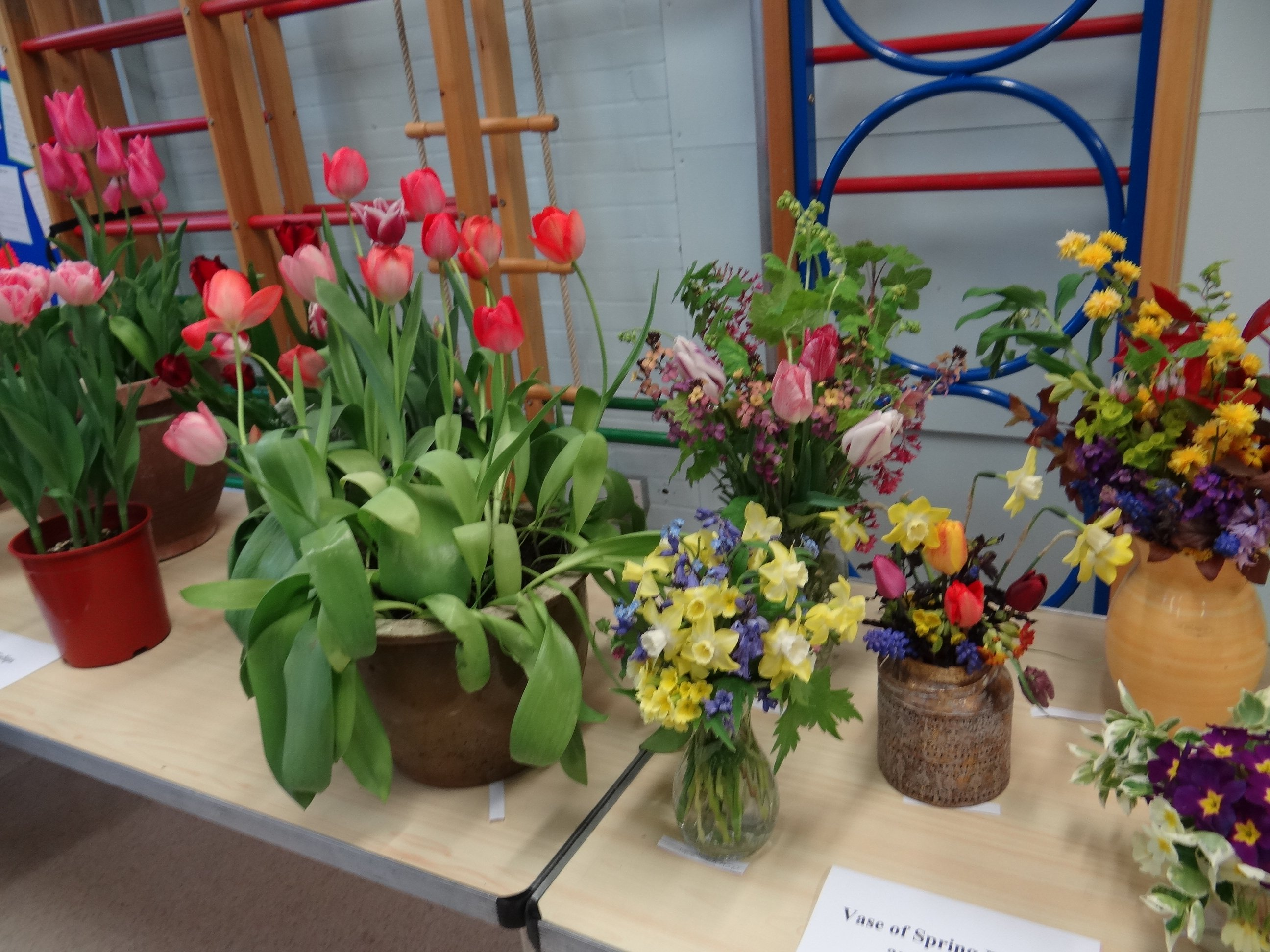 Clanfield Show – highlight of the gardening year