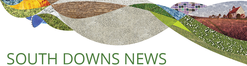 south downs news